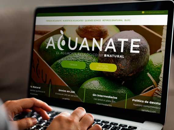 diseno-tienda-on-line-acuanate